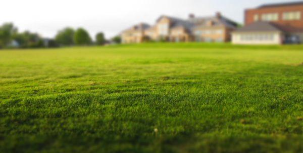 Kupujete pozemek? Přečtěte si další řádky, ať nic nepodceníte!
